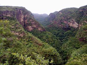 800px-Pachmarhi_valley_Madhya_Pradesh_INDIA
