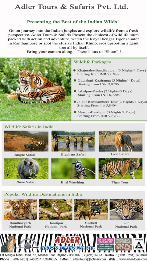 Wildlife Package