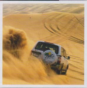 Liwa desert safari