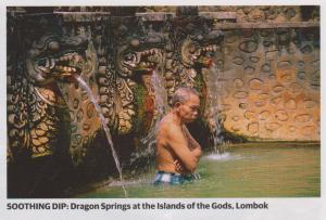 dragon springs