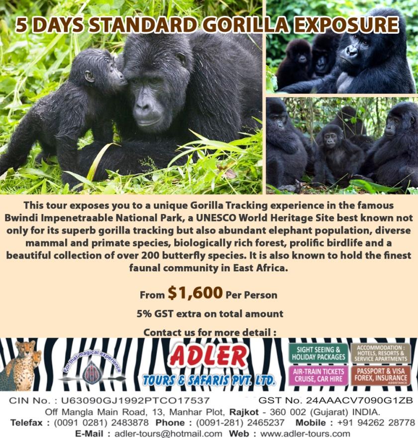 gorilla copy