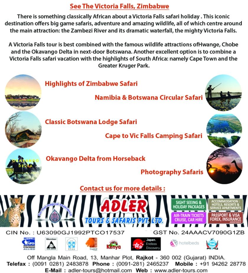 Victoria Falls copy