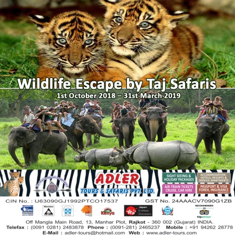 taj safaris copy