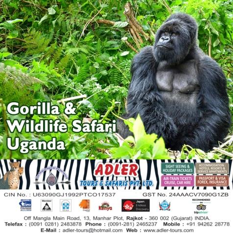 uganda copy