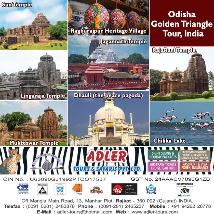 odisha copy