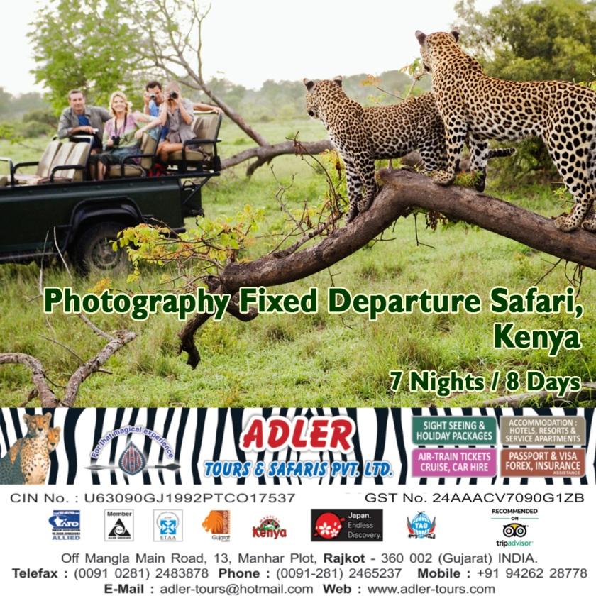 photography safari copy