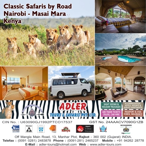 safari by road copy