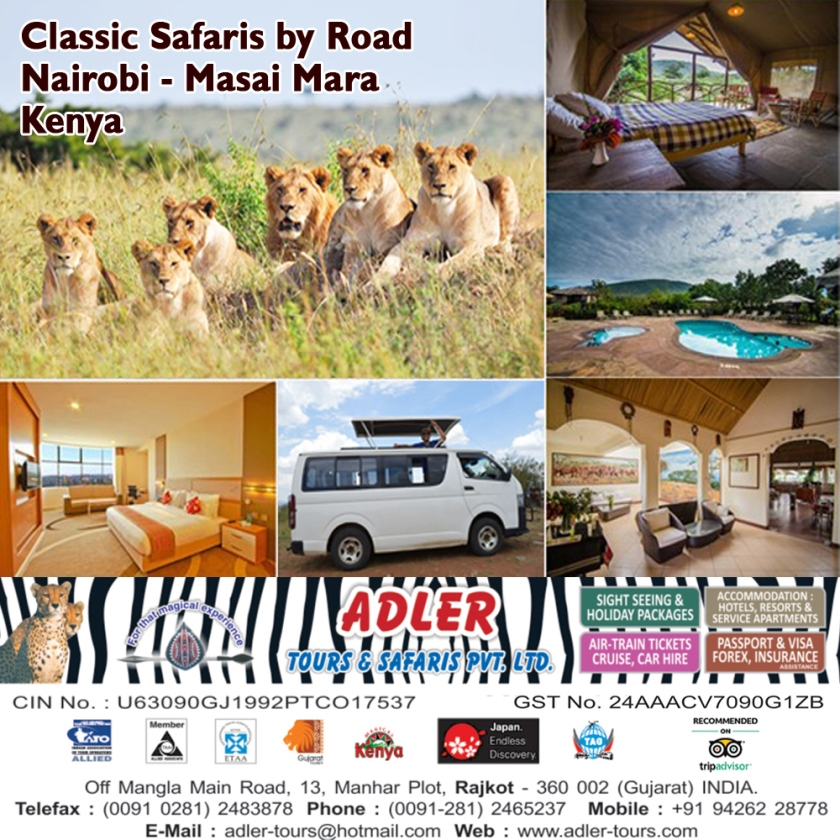 safari by road copy