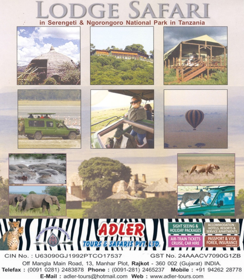 tanzania safari1 copy